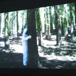 videotraumanaut_large